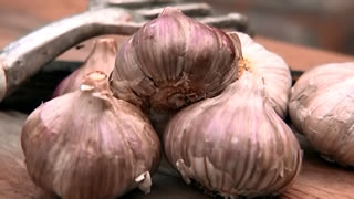 Super Foods: Garlic